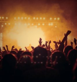 Concert / Music